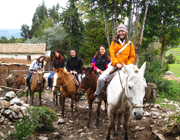 Horseback Riding party theme - thumbnail image
